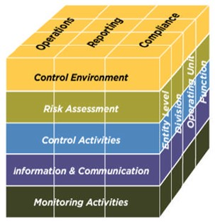 COSO Five Components Cube